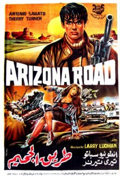 Arizona Road Poster